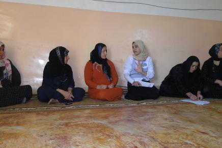 Frauenschutzhäuser: Ein wichtigerSchritt