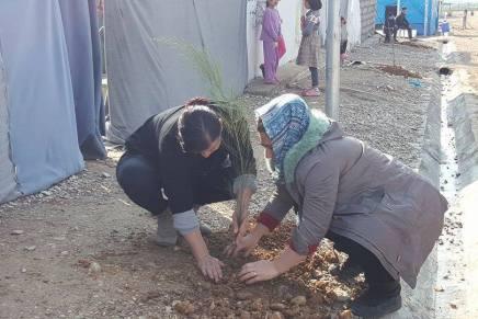 Bäume für Flüchtlingslager