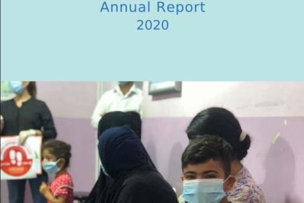Jahresbericht für 2020